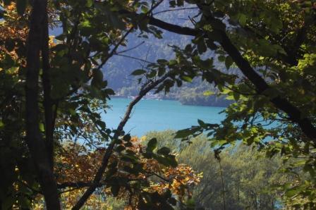 Il lago dalla siepe