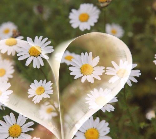 Per Te con affetto :-)