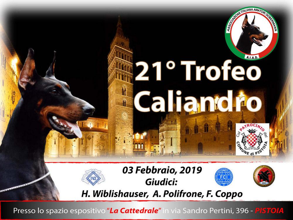 Trofeo Caliandro 2019 per gli Amanti dei cani Dobermann #amatoridobermann