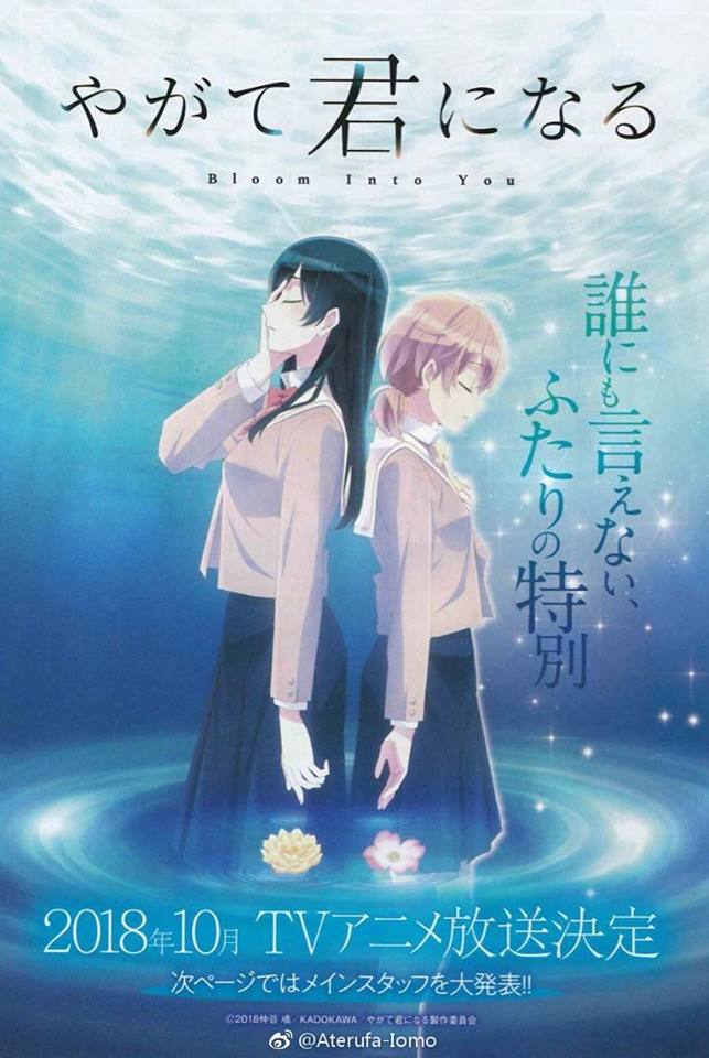 Visual Bloom into you