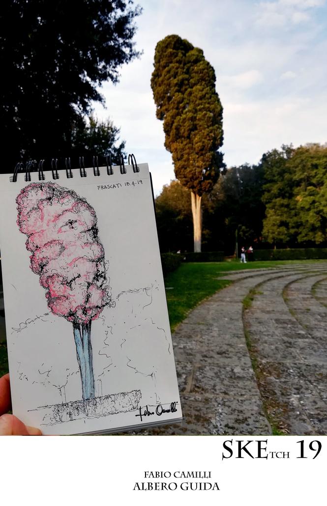 ALBEROGUIDA_SKE19_FABIOCAMILLI