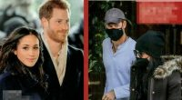 5686783_1453_meghan_markle_harry_incinta