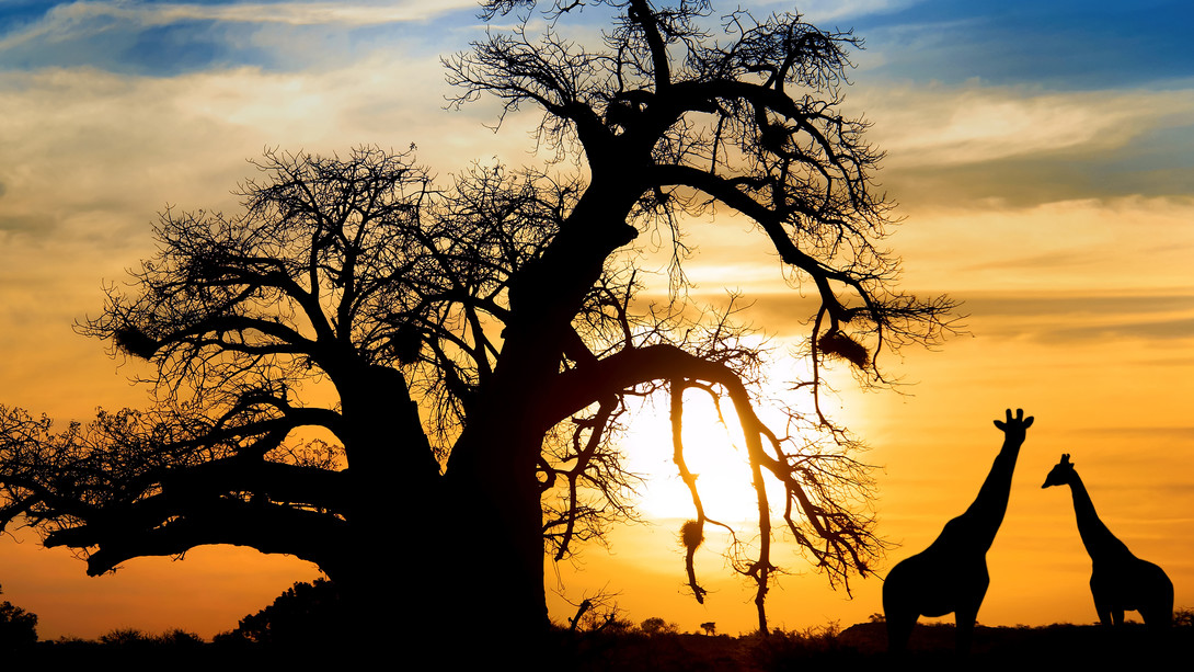 Tramonto-in-Sud-Africa