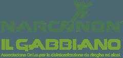 cropped-Logo-Narconon-Il-Gabbiano-Onlus.png