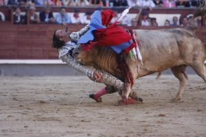 Spanish Bullfighter Julio Aparicio is gored by a bull during a bulfight of the San Isidro Feria at the Las Ventas bullring in Madrid, on may 21, 2010
