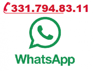 WhatsApp-DI Group telefono - 3317948311 whatsApp