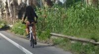 2306516_salaria_bicicletta_susanna_4