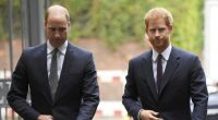harry_william_morte_diana_31184131