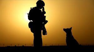 soldato cane