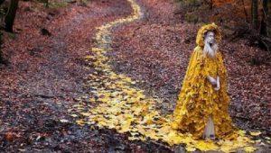 equinozio-d-autunno-e-luna-del-raccolto_409633