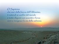 sunset_478