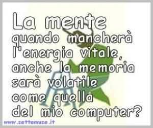 su_col_morale_03