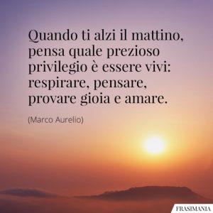frasi-privilegio-vivi-marco-aurelio-768x768