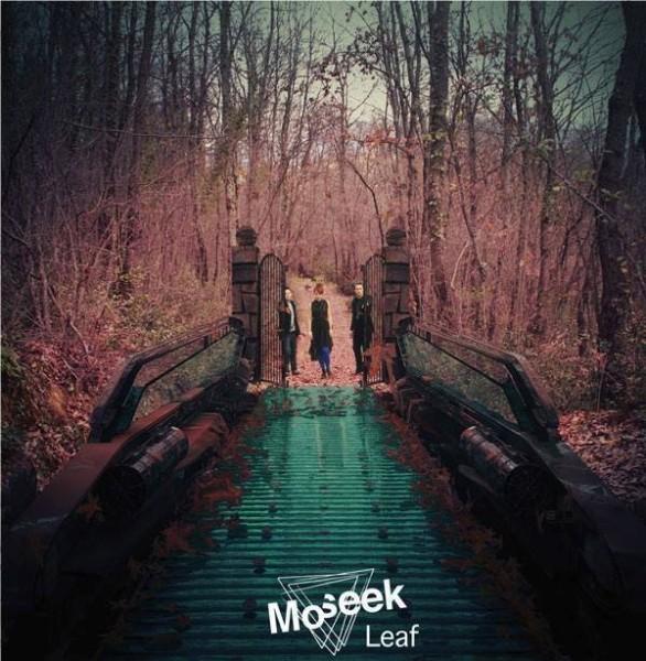 Moseek -