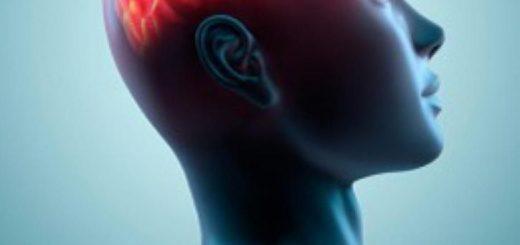 WCENTER 0LGGAECJLZ -   -  cervello