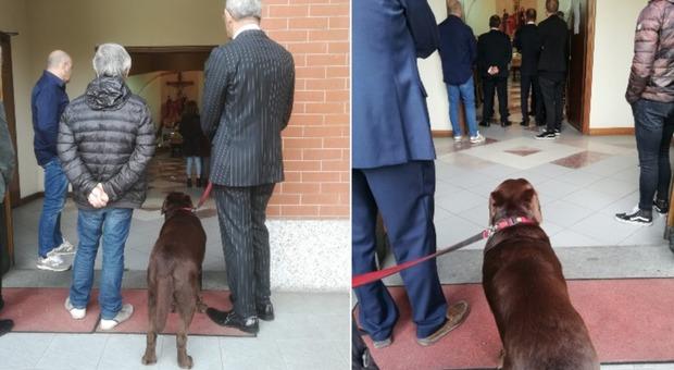 Torino, il padrone è morto e il prete non fa entrare il cane in chiesa per l'ultimo saluto: il pianto di Pavel commuove