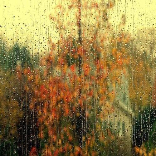 autumn-4254