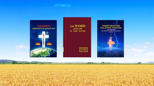1. Dio ha redento l'umanità durante l'Età della Grazia, quindi perché deve comunque svolgere l'opera di giudizio negli ultimi giorni