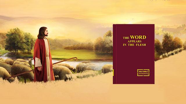 """Domanda 1: Noi crediamo che il ritorno del Signore significherà che i credenti verranno innalzati direttamente nel Regno dei Cieli, poiché è scritto nella Bibbia: """"Poi noi viventi, che saremo rimasti, verremo insiem con loro rapiti sulle nuvole, a incontrare il Signore nell'aria; e così saremo sempre col Signore"""" (1 Tessalonicesi 4:17). Voi testimoniate che il Signore Gesù è ritornato; allora perché noi ora siamo sulla terra e non siamo ancora rapiti?"""
