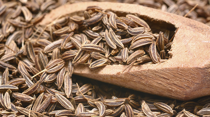semi di cumino proprietà benefiche