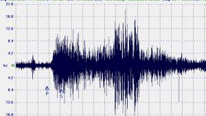 Terremoto(1)
