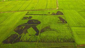 Come diventare agricoltore biologico.