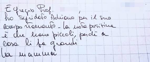 nota-disabile-prof_13155751