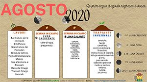 ALMANACCO-AGOSTO-2020_300_169