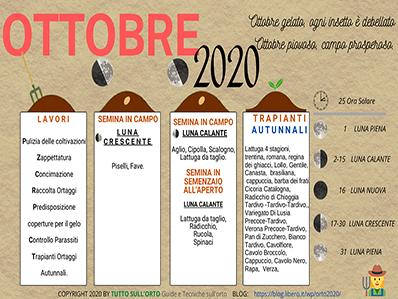Cosa fare nell'orto a ottobre: ecco i lavori del mese