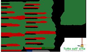 brochure_consociazione_ortaggi