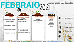 FEBBRAIO-2021_300_169