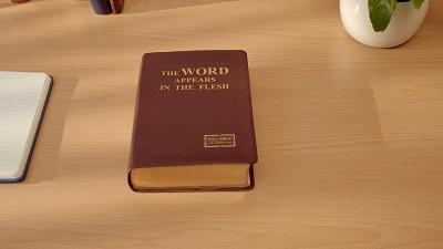 La Parola appare nella carne
