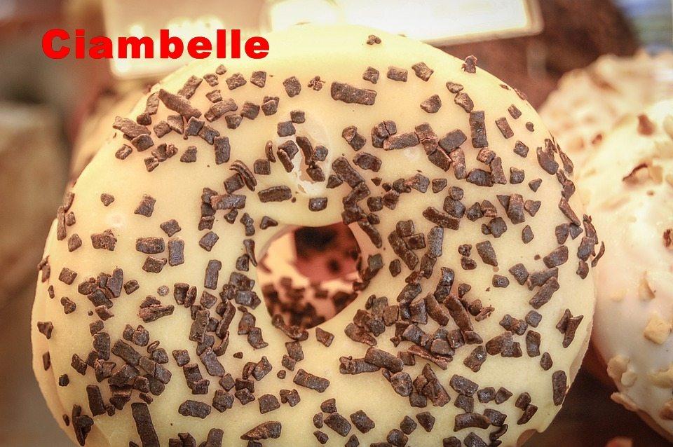 Ciambella ricotta e cioccolato fondente