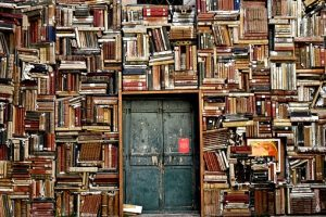 books-1655783__340[1]