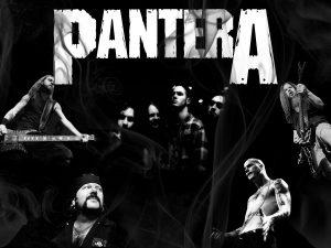 pantera_wallpaper_by_delligirl