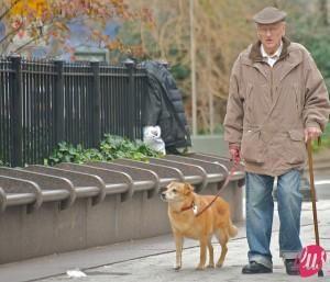 anziano-con-cane-300x257