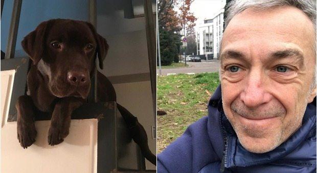 Il dramma di Linus, morta la cagnolina di soli 10 mesi: