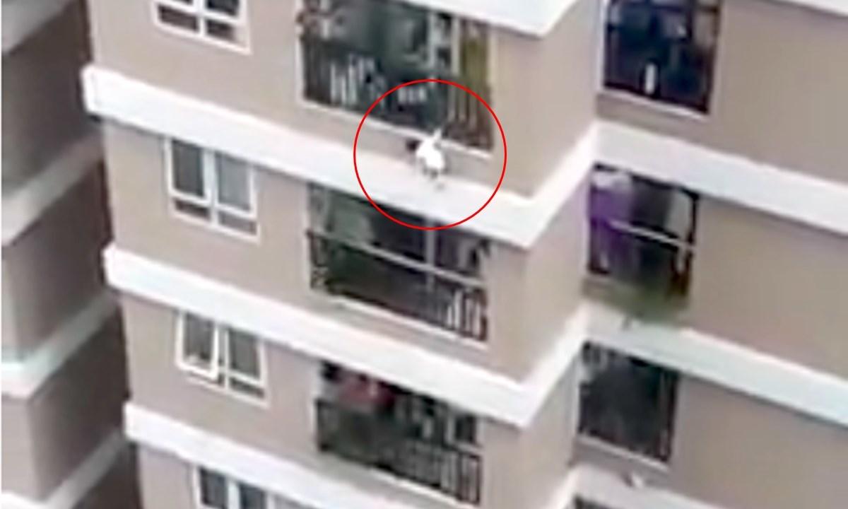 Bimbo di 3 anni precipita dal dodicesimo piano di un palazzo, salvato da un fattorino