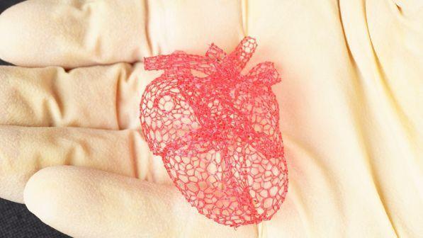 Illinois, nuova frontiera della tecnica 3D: zucchero per stampare cuore e polmoni