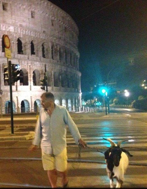 Roma bestiale, passeggia al Colosseo con una capra al guinzaglio: la foto è virale