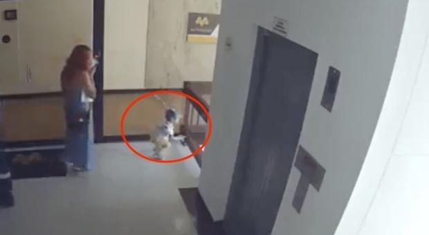 Mamma è al telefono, bimbo di un anno cade dal balcone: le immagini choc