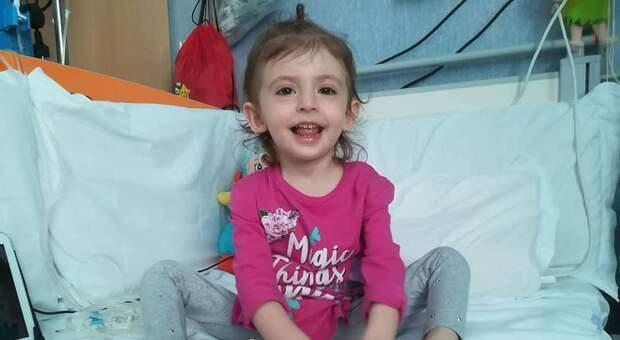Elisa morta a 6 anni di leucemia. Il padre: «Usano le foto della mia bimba per finte raccolte fondi»