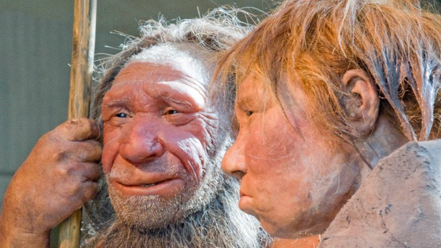 Dna ereditato dai Neanderthal interferisce con i nostri geni: incide su schizofrenia e lupus